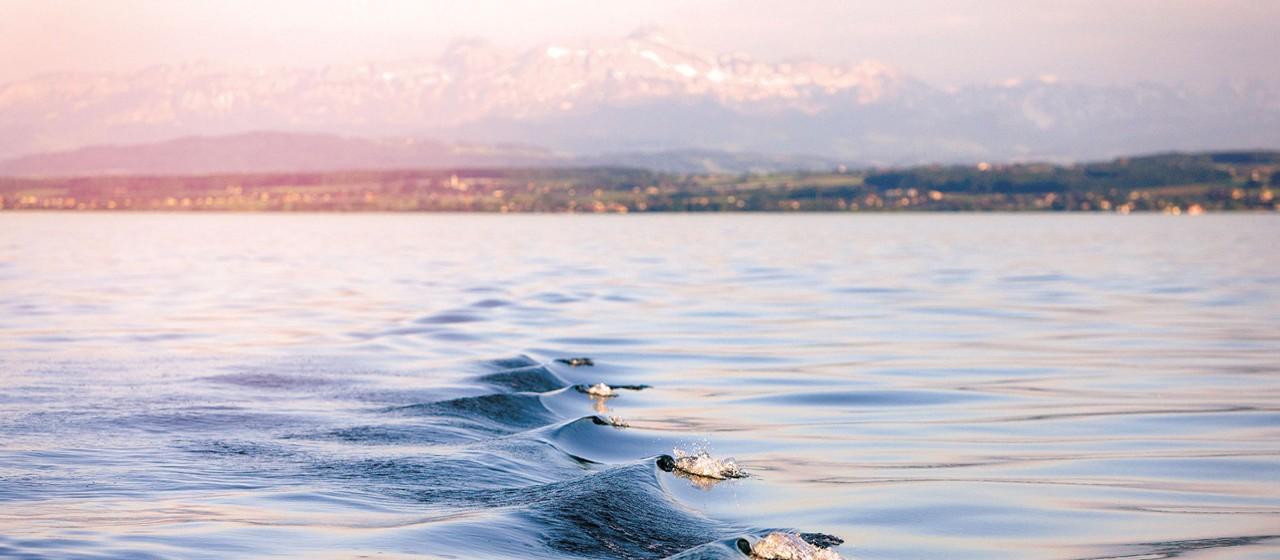 Bodensee: Sparkasse Bodensee für Firmenkunden